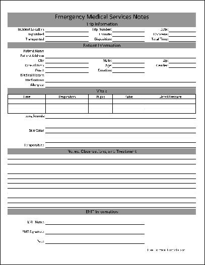 "Here is a preview of the ""Basic EMS Notes"" form:"