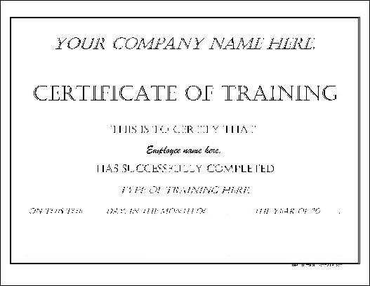 Impressive Dated Training Certificate